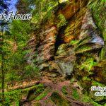 Rock-Houser-spring-A9